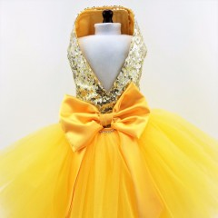Golden Ombre Sequined Harness Dress